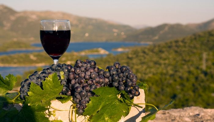 Croatian Wine, Croatia, Cruise Croatia