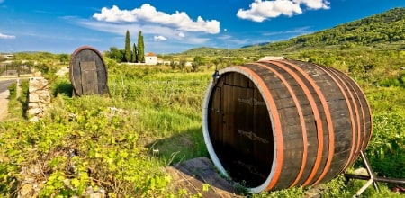 Croatia Wine Cruises