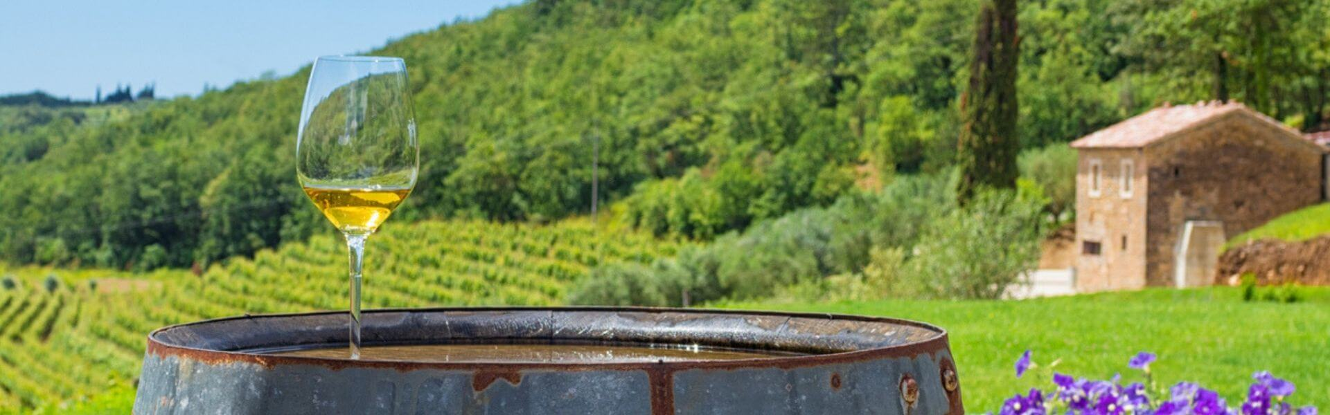 Croatian Wines To Tickle Your Taste Buds