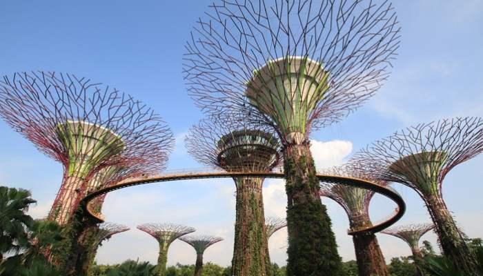 Singapore, Gap Year