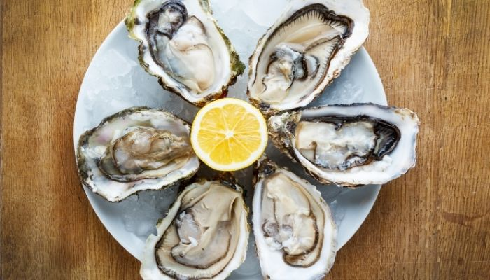 Oysters from Ston